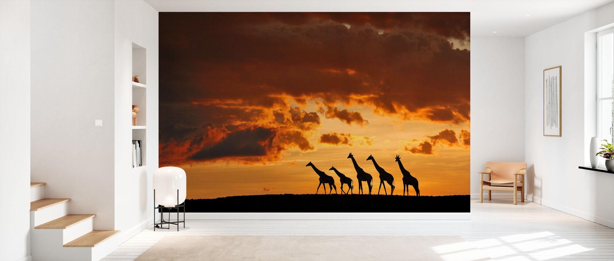 Five Giraffes - Wallpaper - Hallway