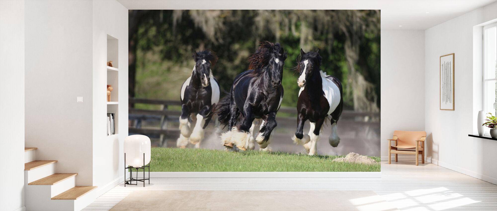 Horse Team - Wallpaper - Hallway