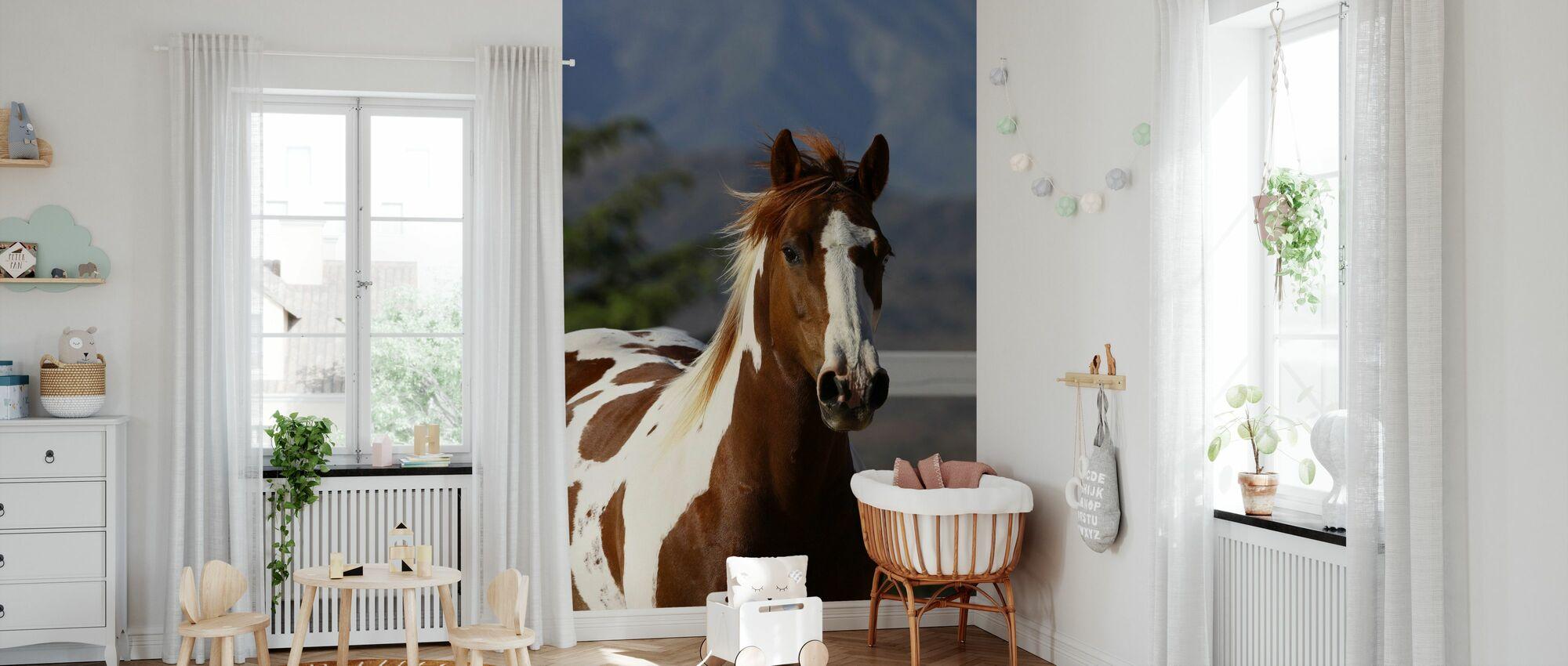 Quarter Horse Close Up I - Wallpaper - Nursery