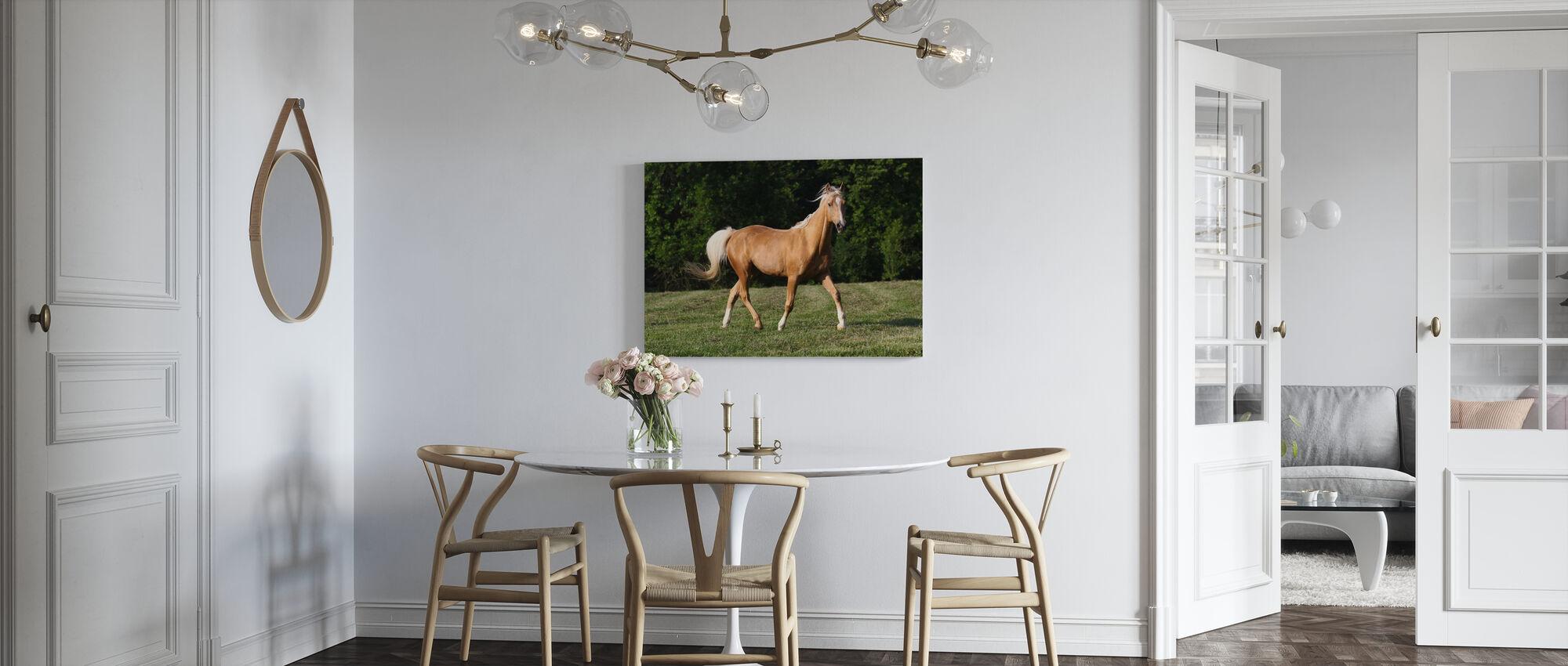 Chestnut Quarter Horse - Canvas print - Kitchen