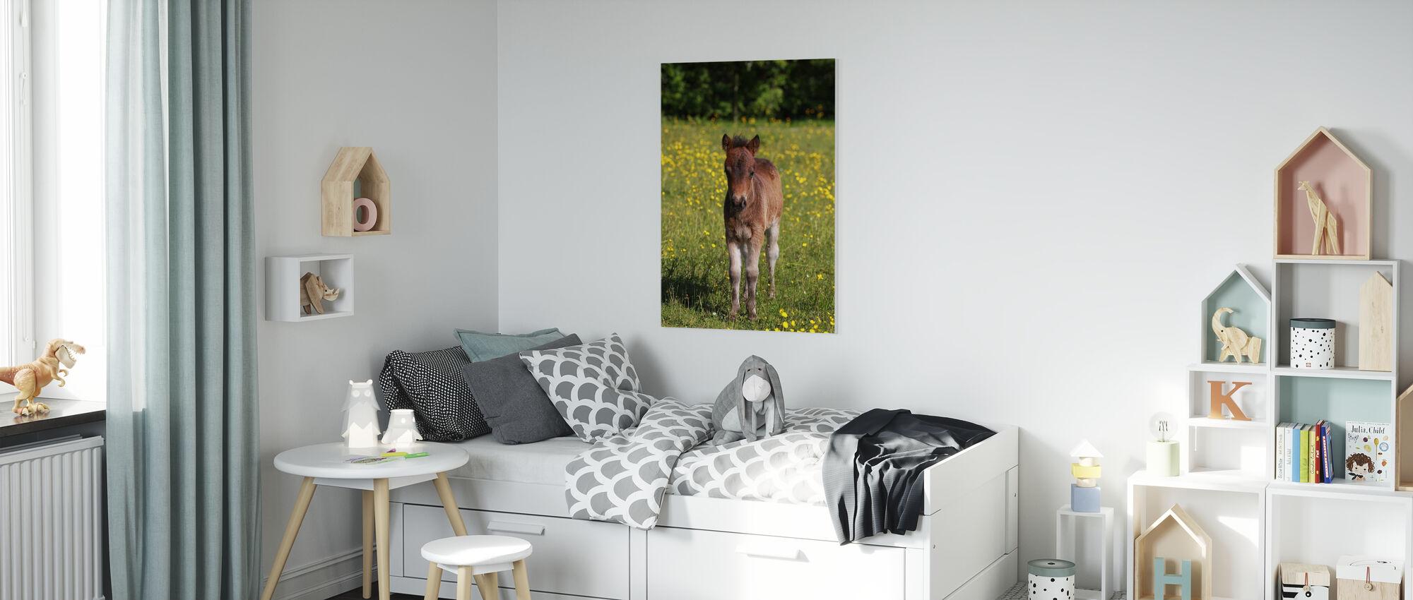 Shetland Pony Foal - Lerretsbilde - Barnerom