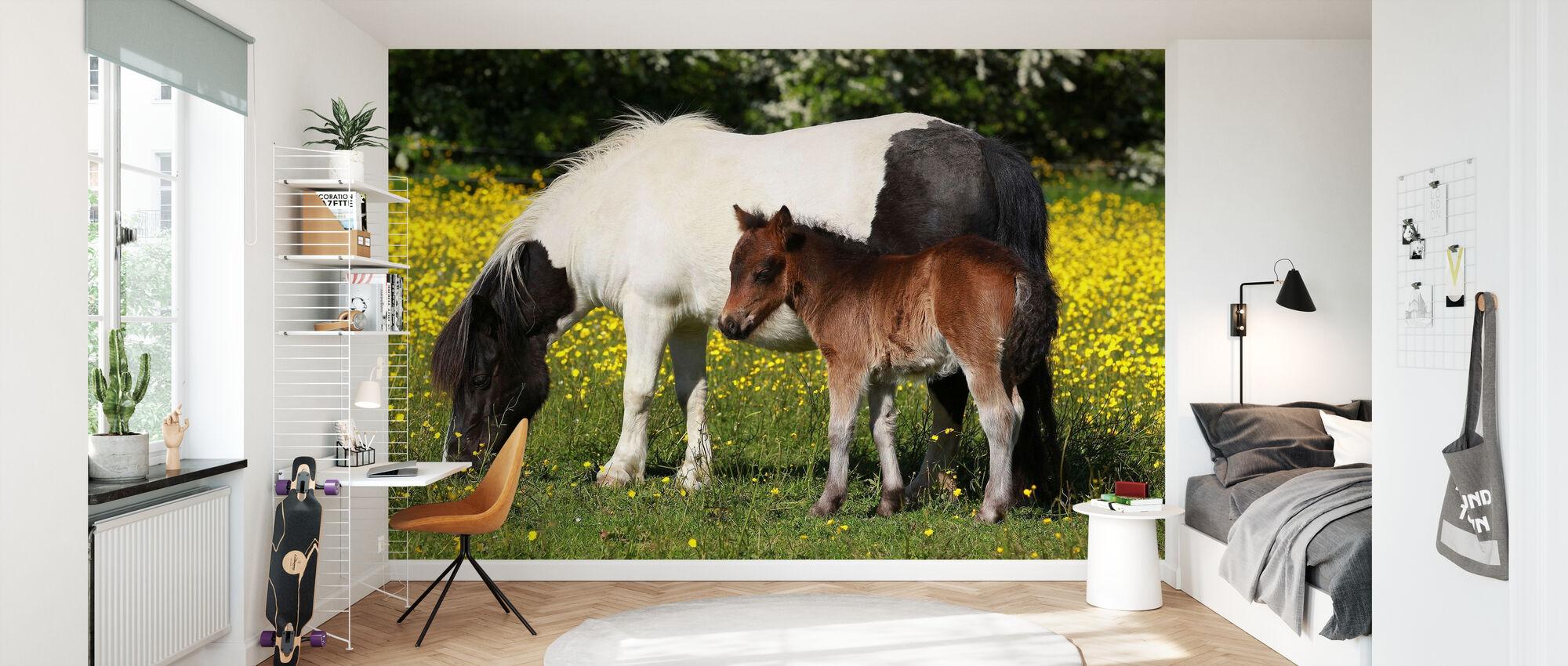 Shetland Ponnyer Föl och mor - Tapet - Barnrum
