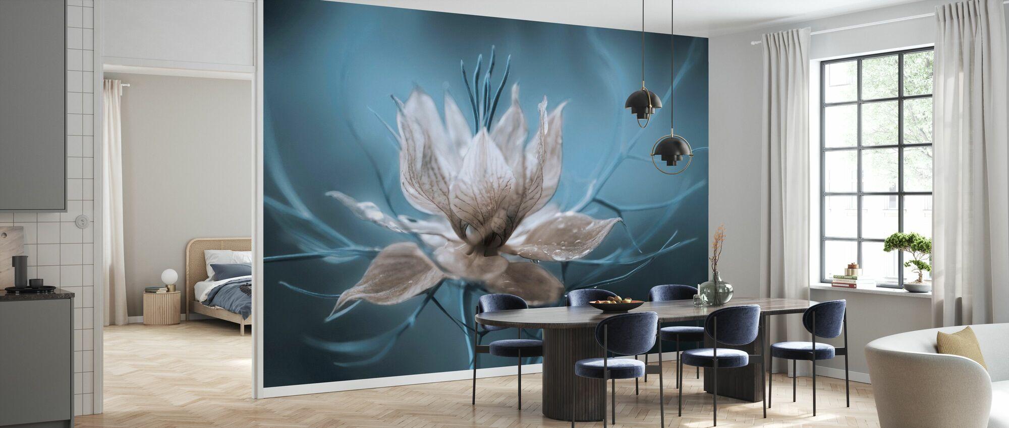 Nigella - Wallpaper - Kitchen
