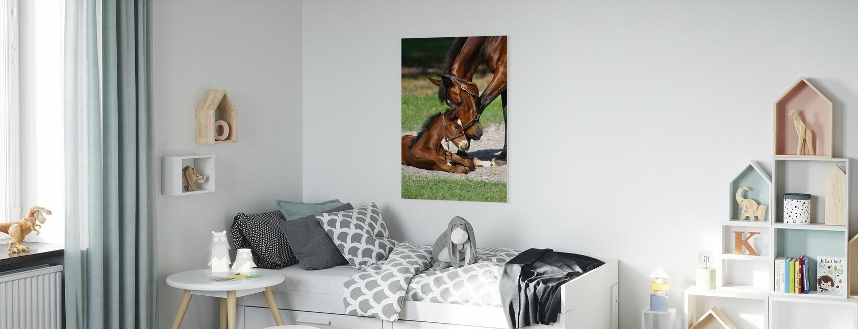Fullblods hester Kussing - Lerretsbilde - Barnerom