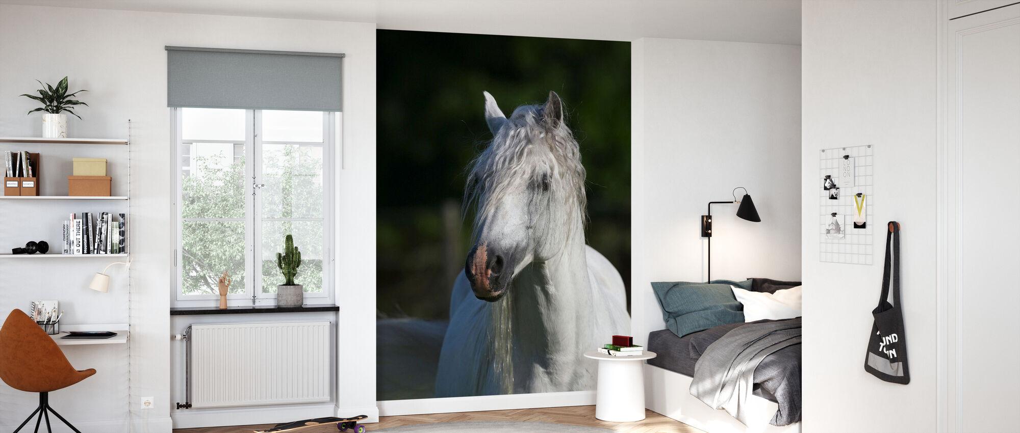 Welsh ponny närbild - Tapet - Barnrum