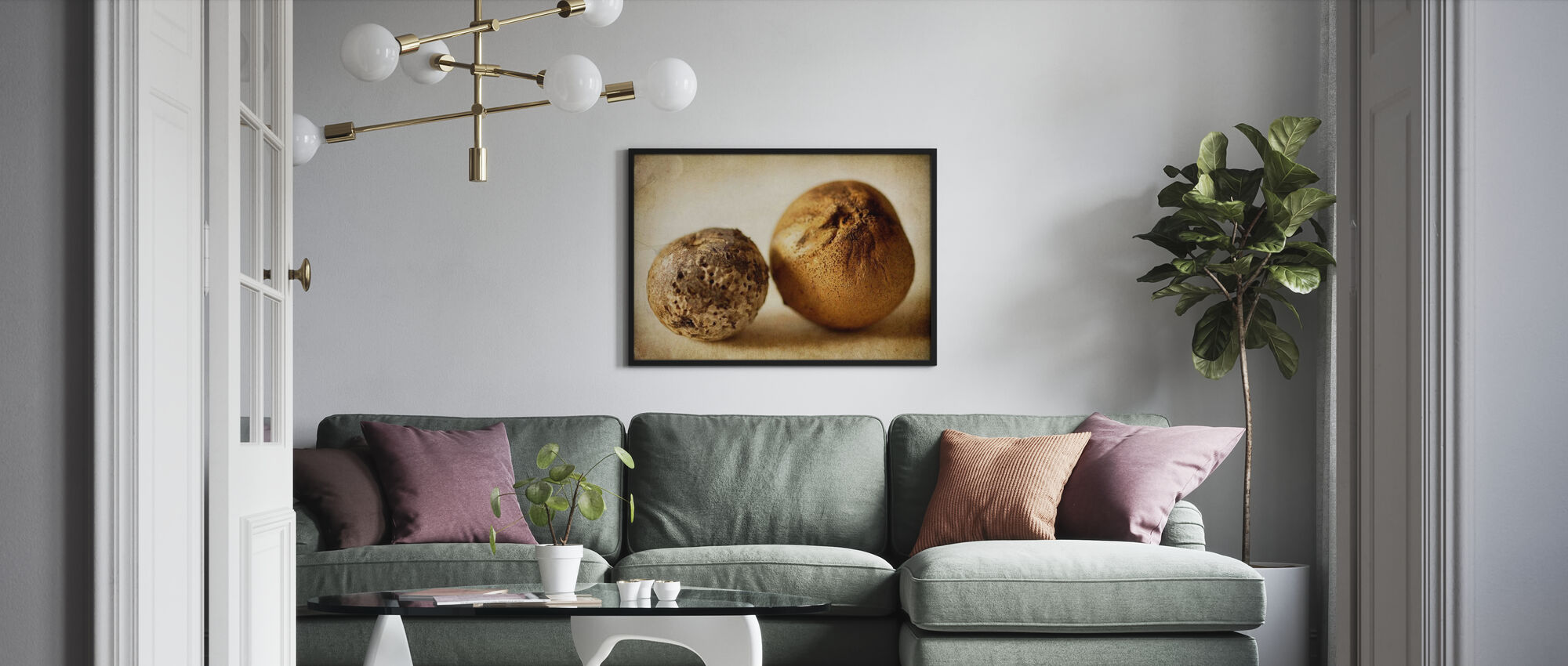 Two Oak Pods - Poster - Living Room