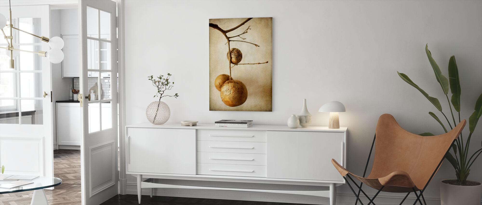 Vintage Oak Pods - Canvas print - Living Room