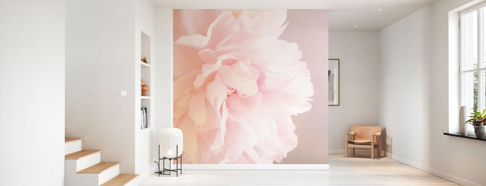Light Pink Peony - Wallpaper - Hallway