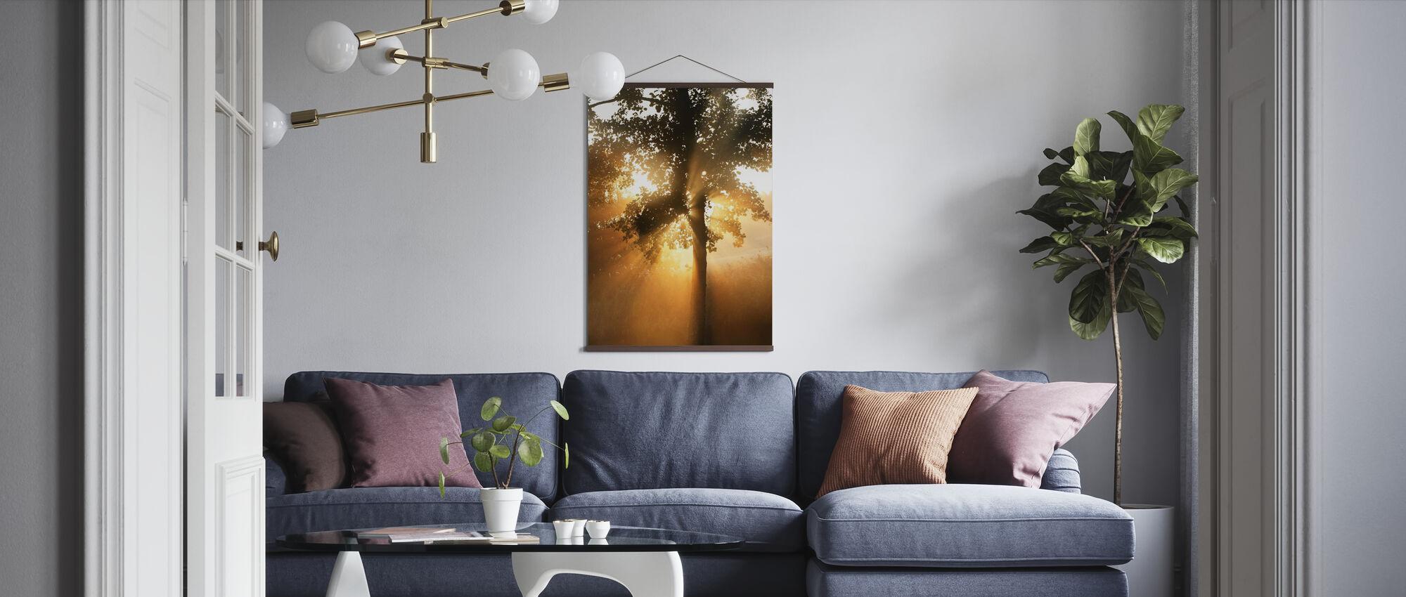Morgen solstråle gennem blade - Plakat - Stue
