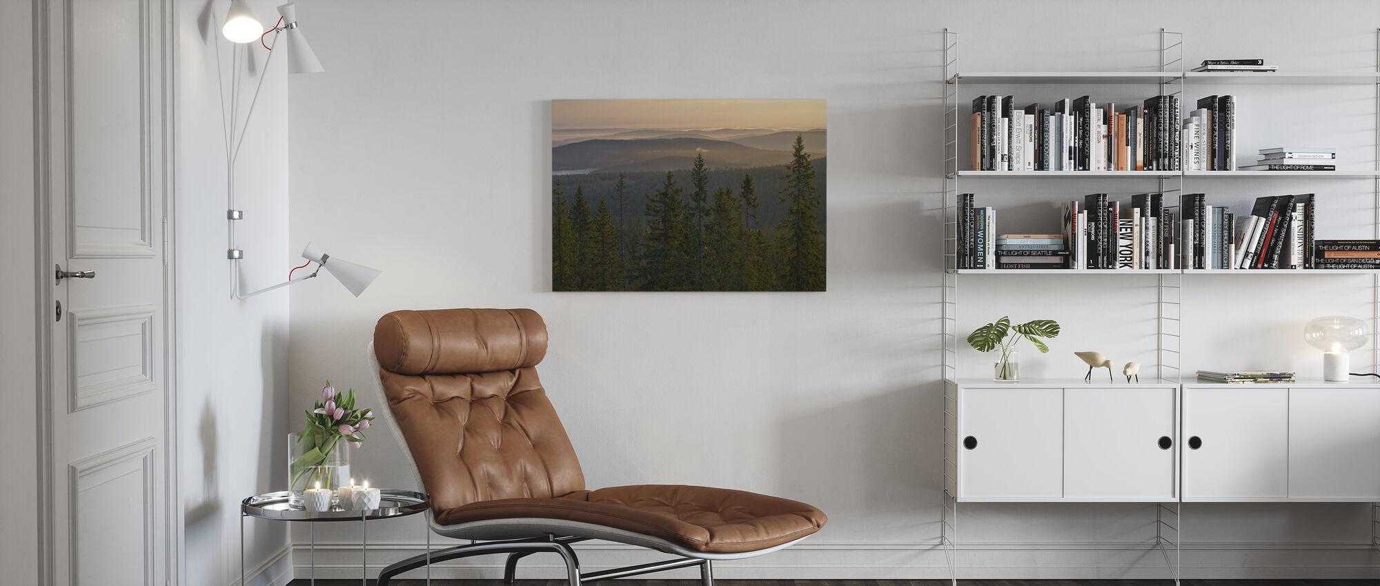 Skuleskogen Nationalpark Fichte, Schweden - Leinwandbild - Wohnzimmer