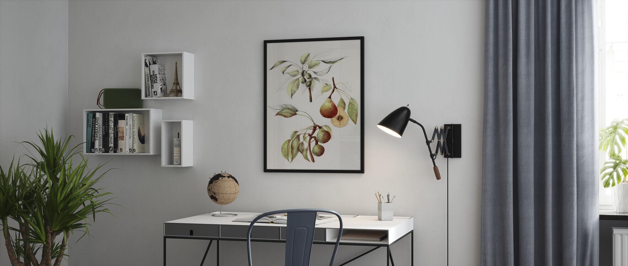 Pine Street Pears - Framed print - Office