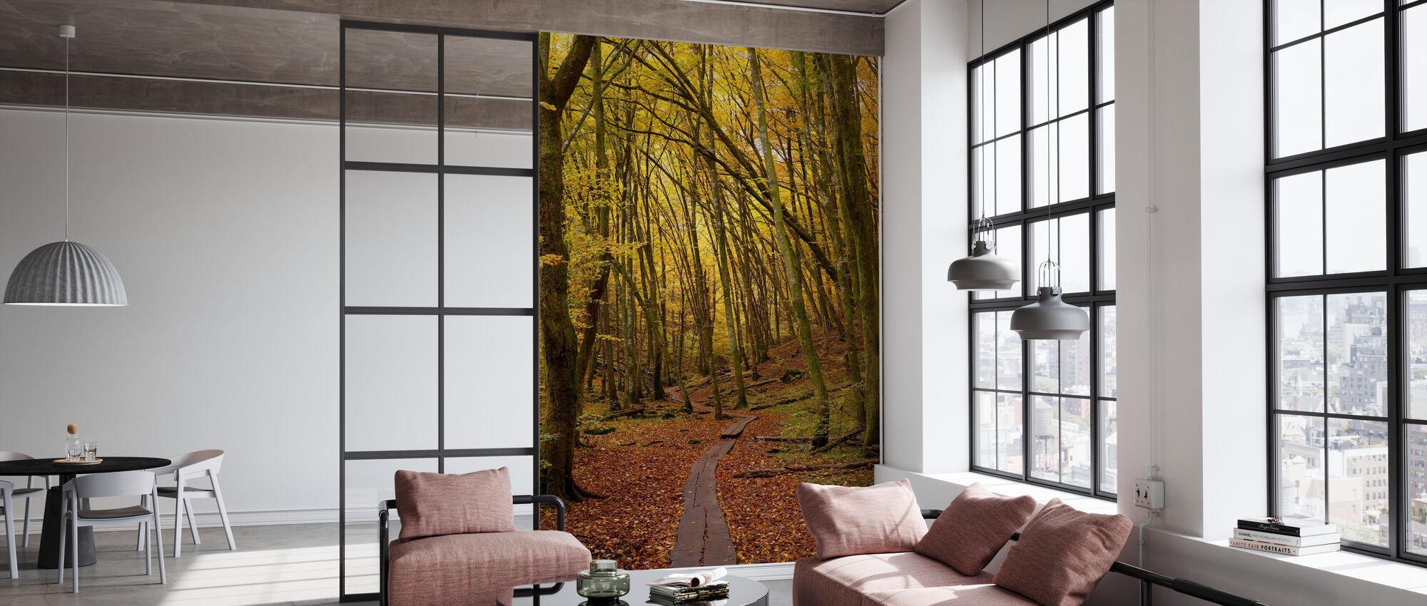 Path through Beech Wood - Wallpaper - Office