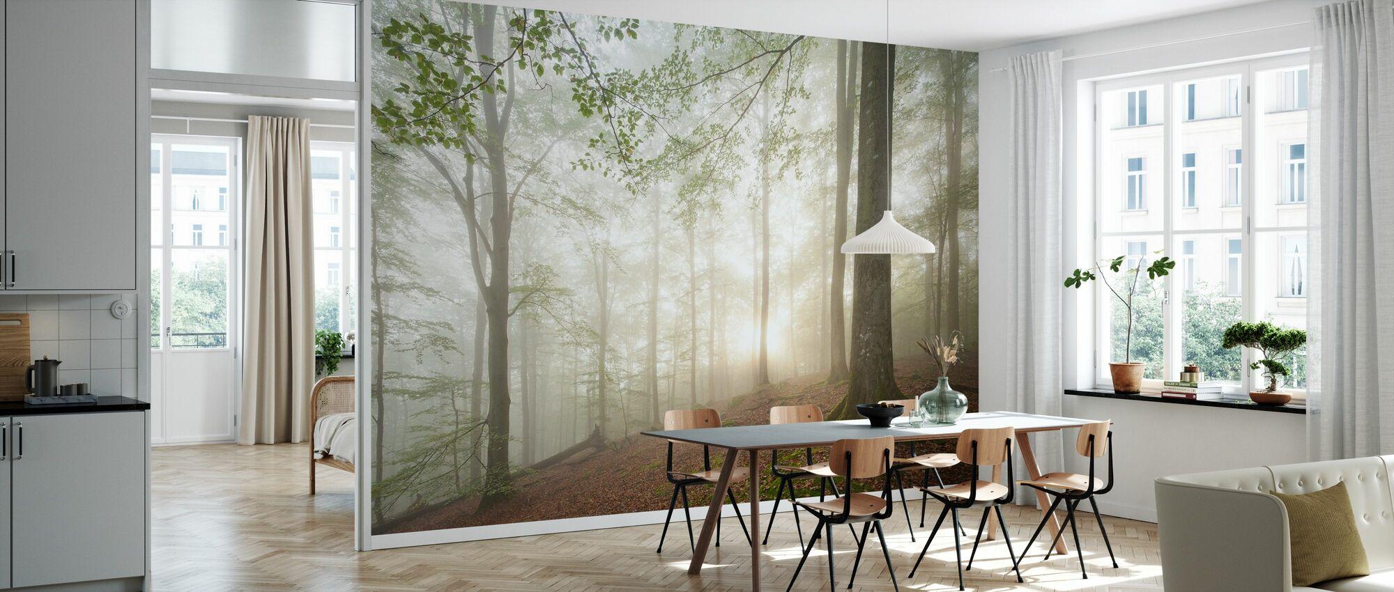 Zweeds Beukenbos II - Behang - Keuken