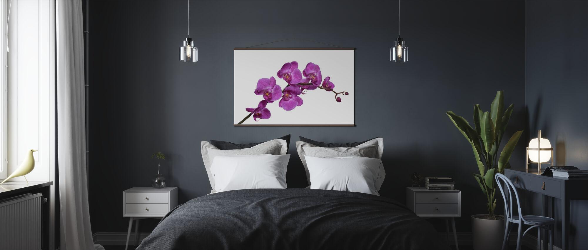 Crisp Orchids - Poster - Bedroom