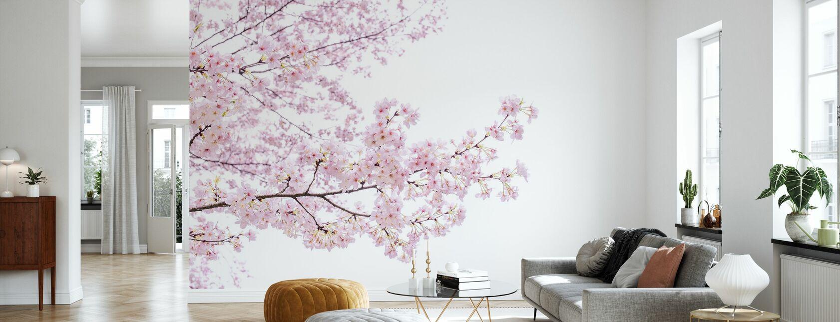 Divine Cherry Blossoms - Wallpaper - Living Room