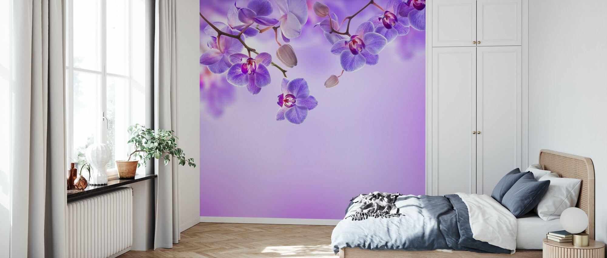 Pehmeä violetti orkideat - Tapetti - Makuuhuone
