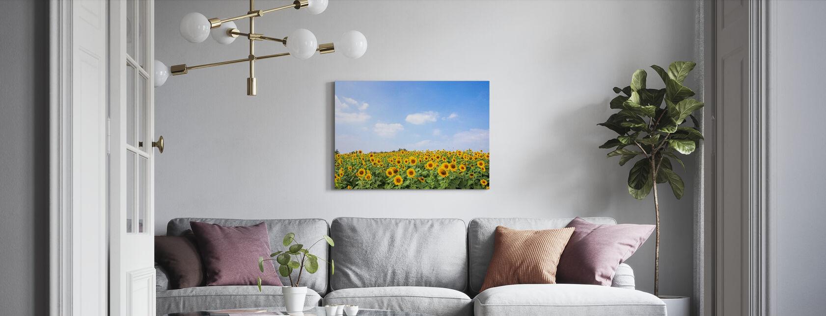 Pehmeät auringonkukat - Canvastaulu - Olohuone