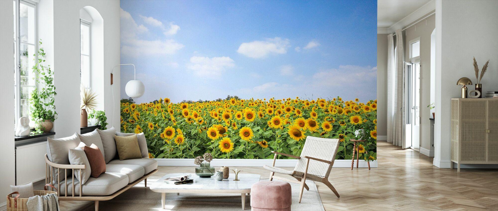 Soft Sunflowers - Wallpaper - Living Room