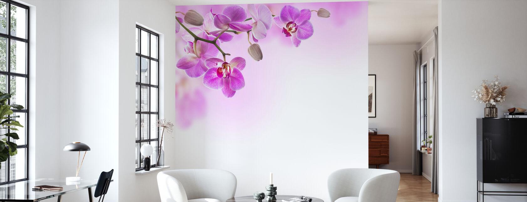 Tropical Fuchsia Orchids - Wallpaper - Living Room