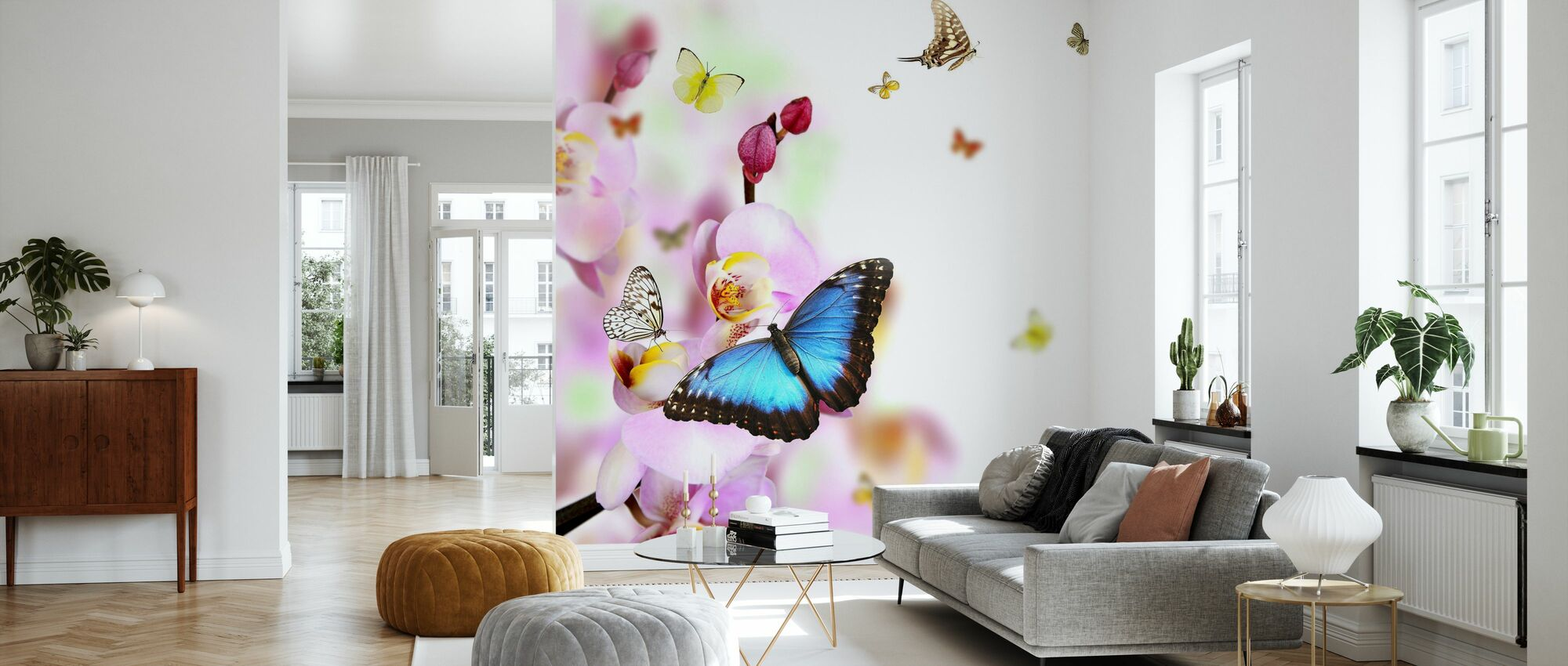 Butterflies and Orchid Blossoms - Wallpaper - Living Room