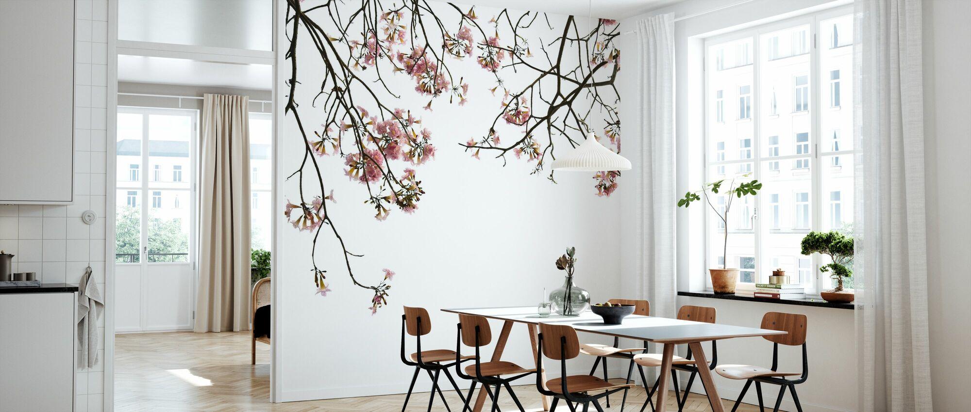 Kirsebær Grener - Tapet - Kjøkken