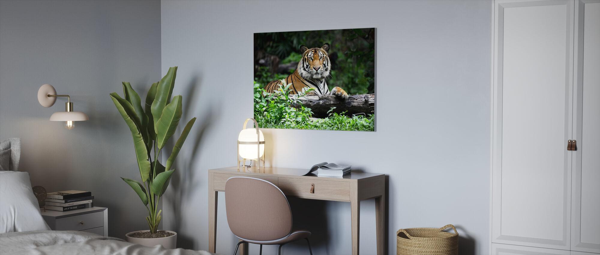Bengal Tiger - Billede på lærred - Kontor