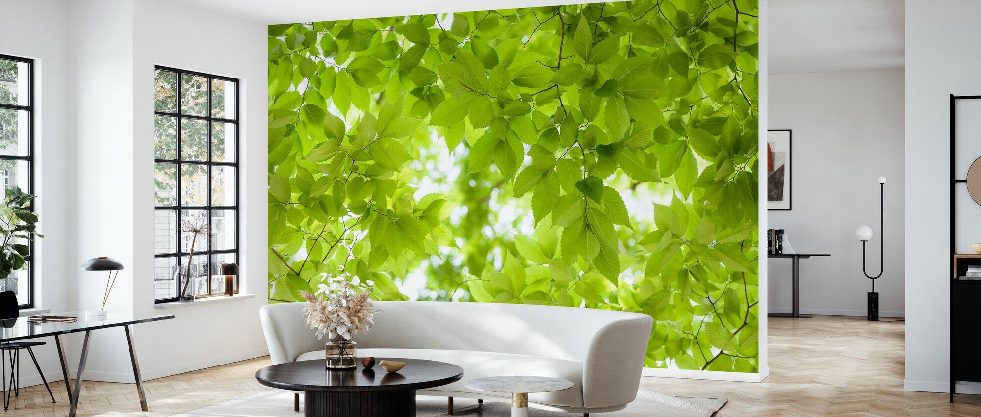 Green Leaves Background - Wallpaper - Living Room