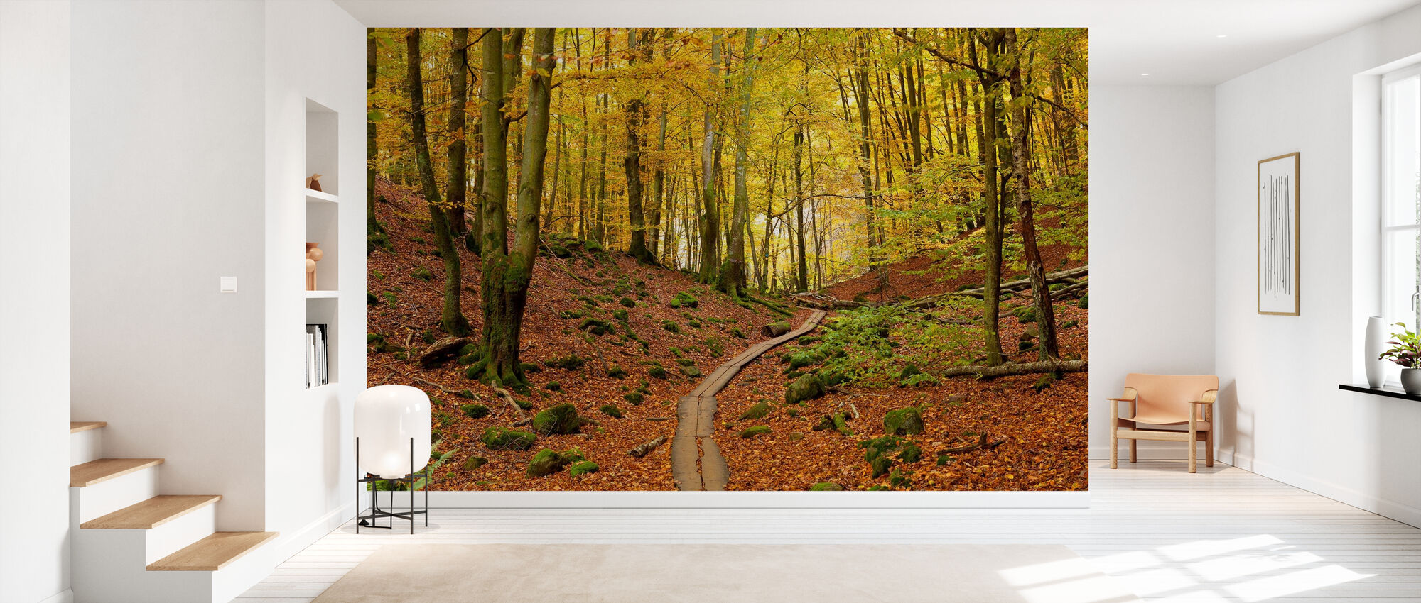 Soderasen Beech Wood, Sweden, Europe - Wallpaper - Hallway