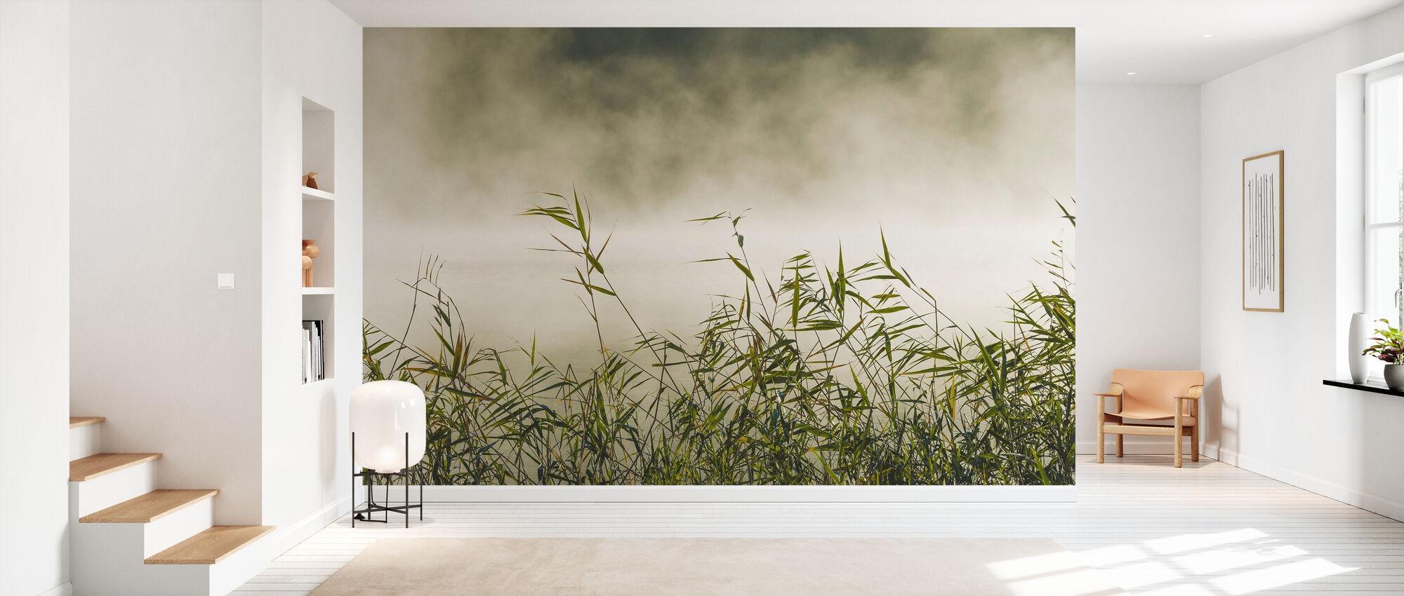 Yngaren in Fog, Sweden - Tapet - Hall
