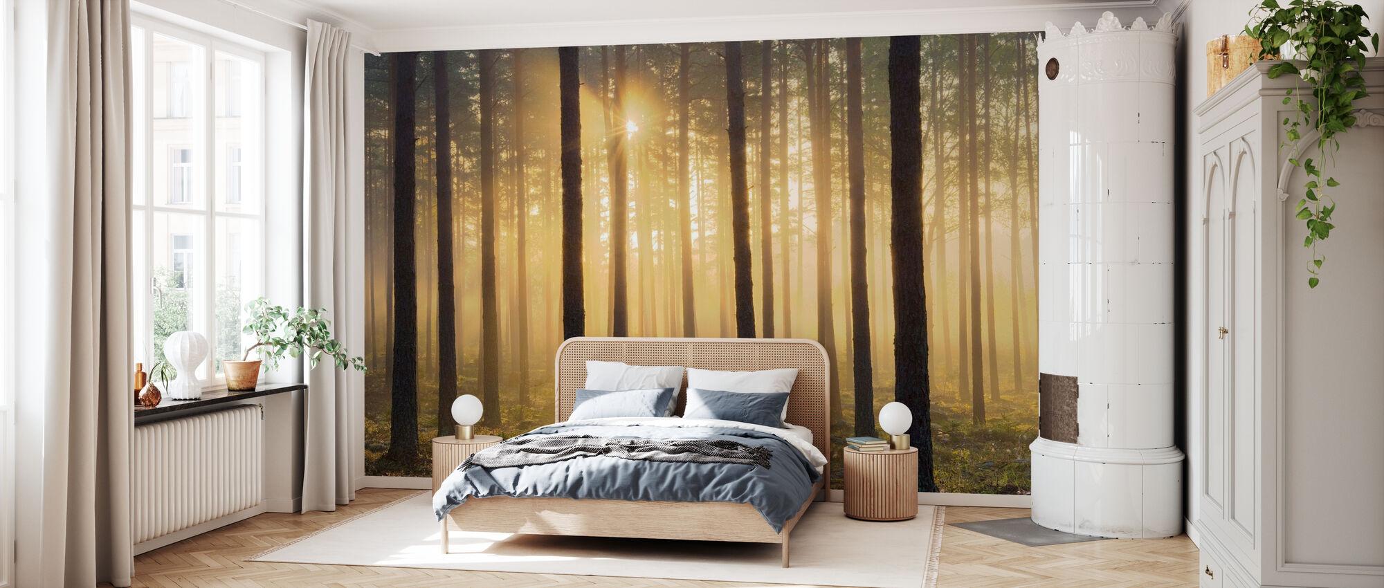 Dennenboom ochtend - Behang - Slaapkamer