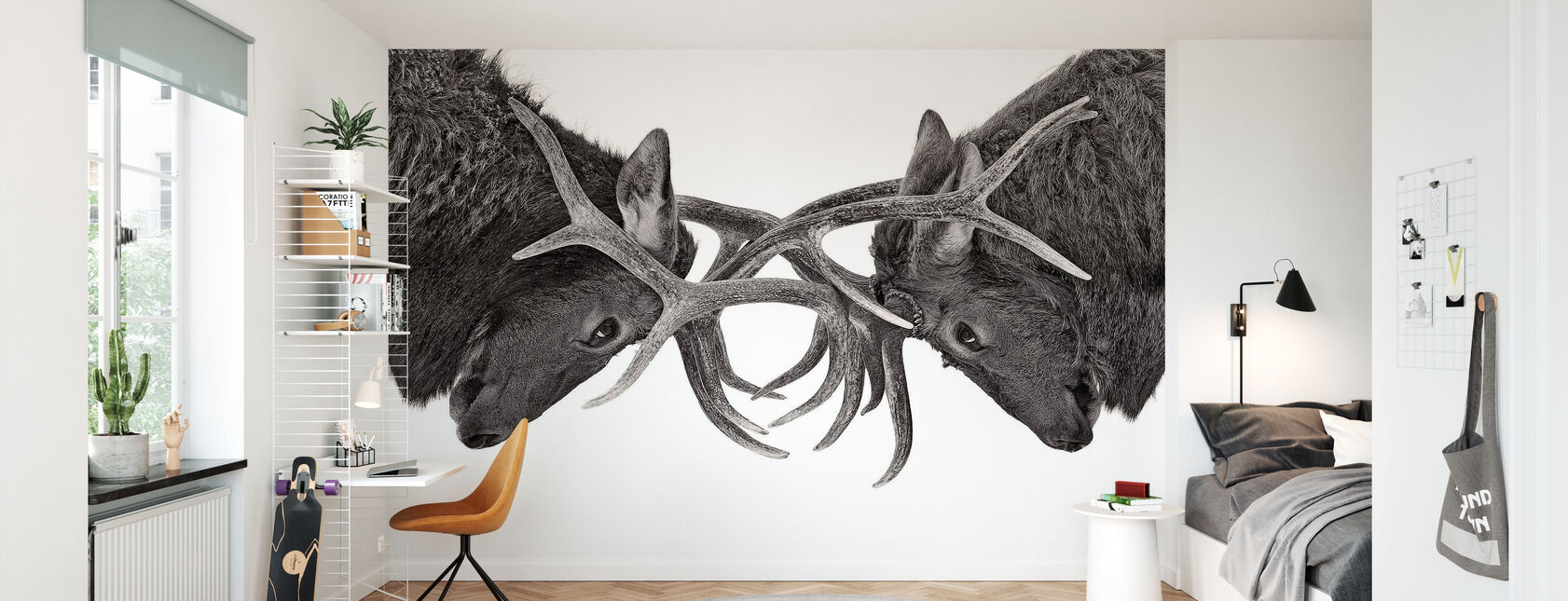 Eye to Eye - Elk fight, black and white - Wallpaper - Kids Room