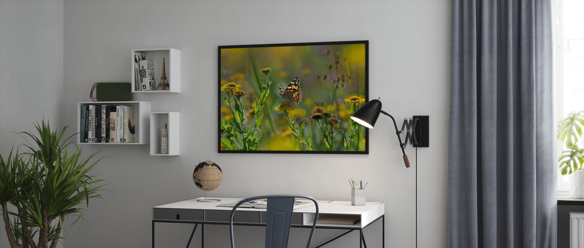 Painted Lady Butterfly - Poster - Office