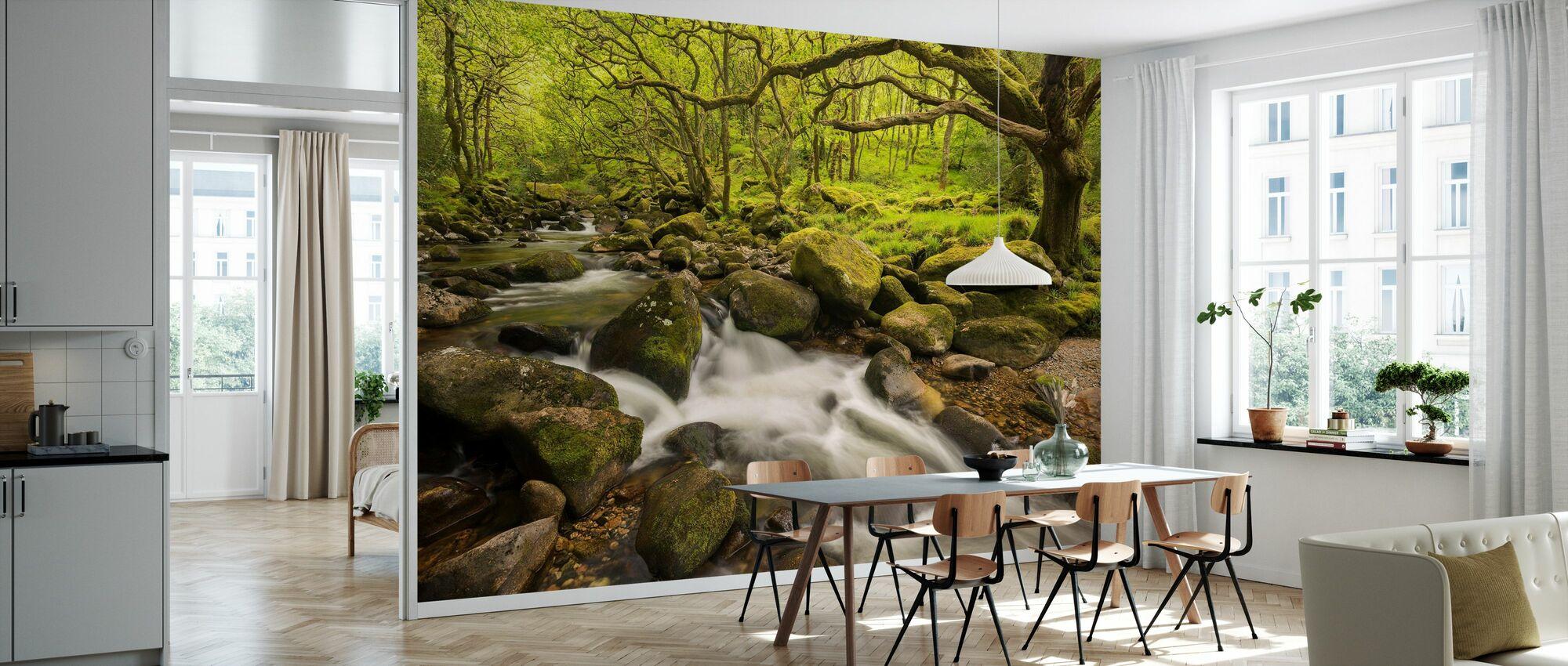 River Plym in Dewerstone Wood, Devon, England, UK - Wallpaper - Kitchen