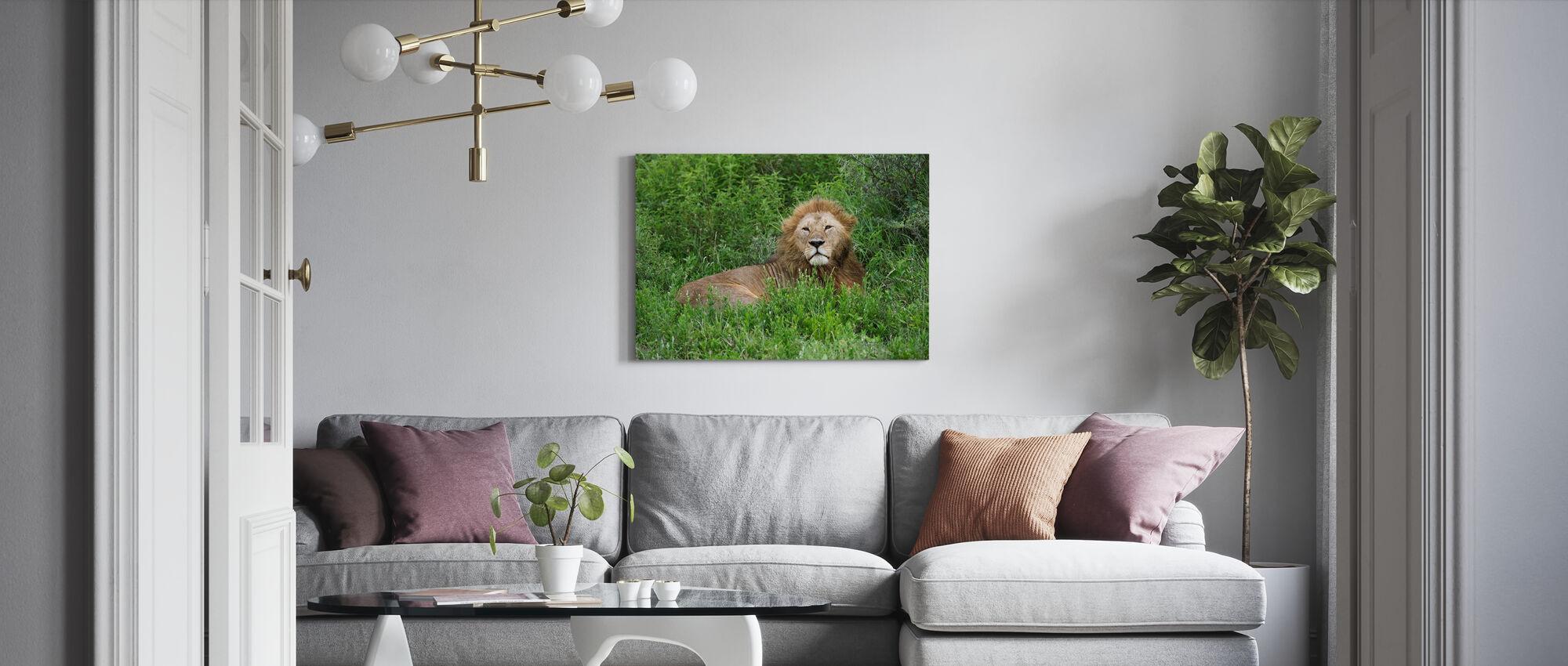 Lion se cachant en vert - Impression sur toile - Salle à manger
