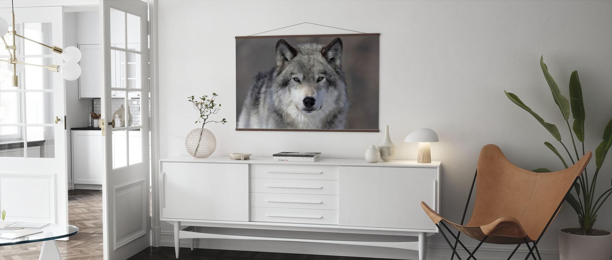 Porträt von einem Wolf - Poster - Wohnzimmer