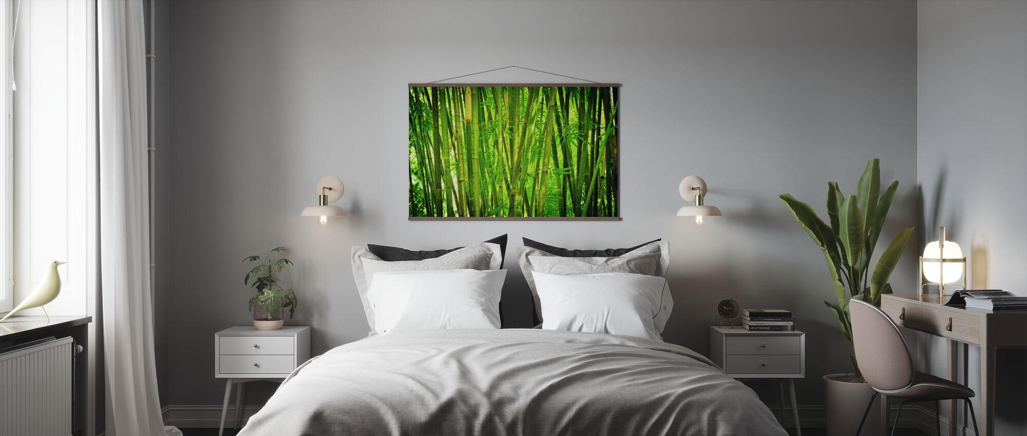 Grønn bambus - Plakat - Soverom