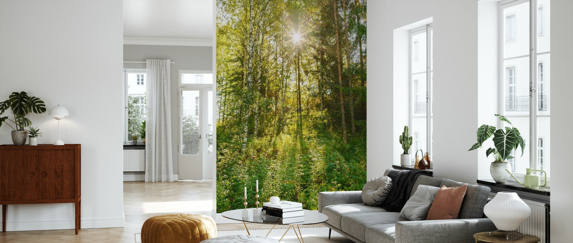 Sunlit Deciduous Trees, Finland - Wallpaper - Living Room
