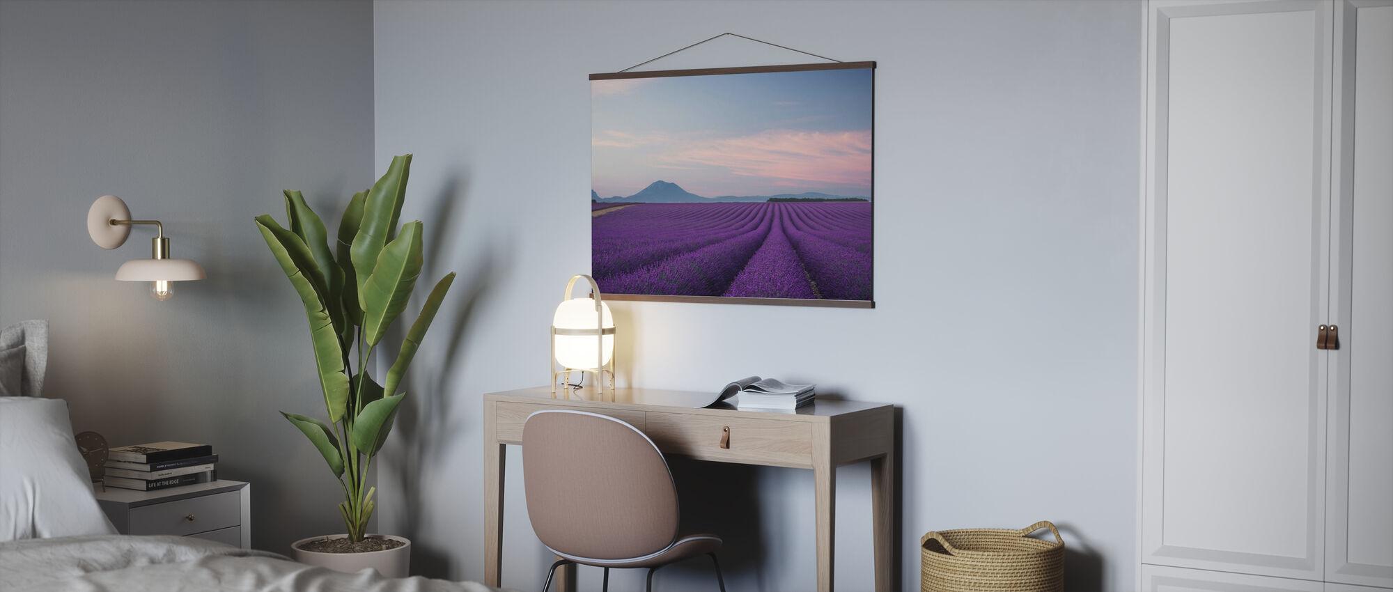 Lavendel felt - Plakat - Kontor