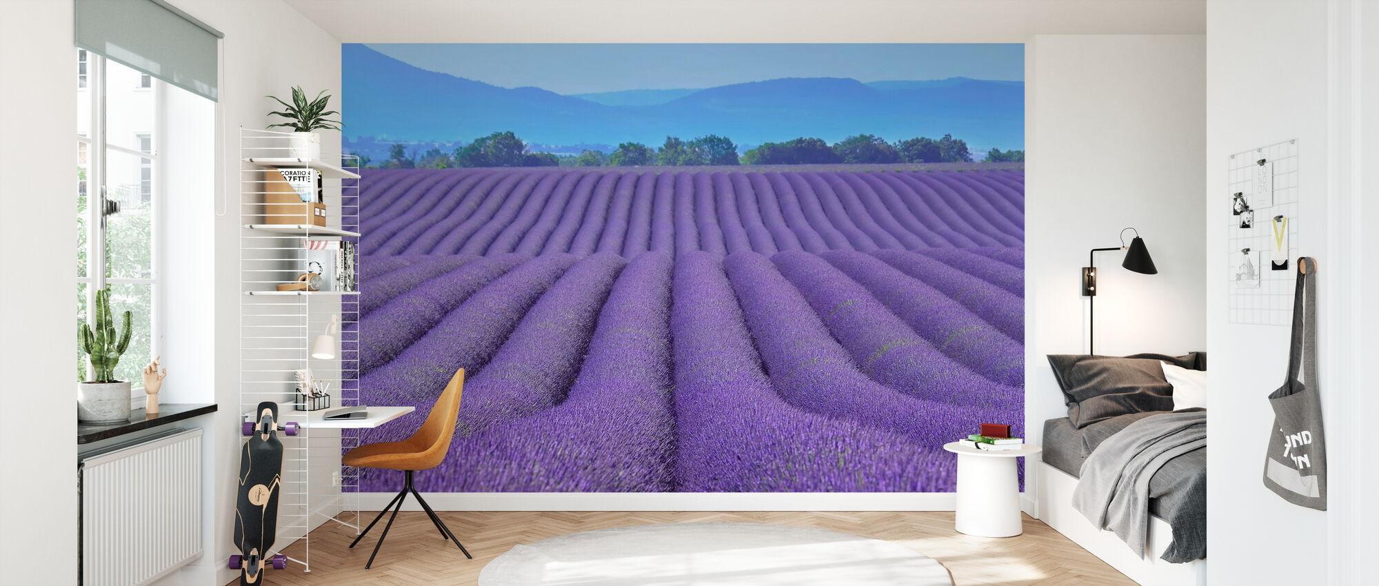 Gorgeous Lavender - Wallpaper - Kids Room