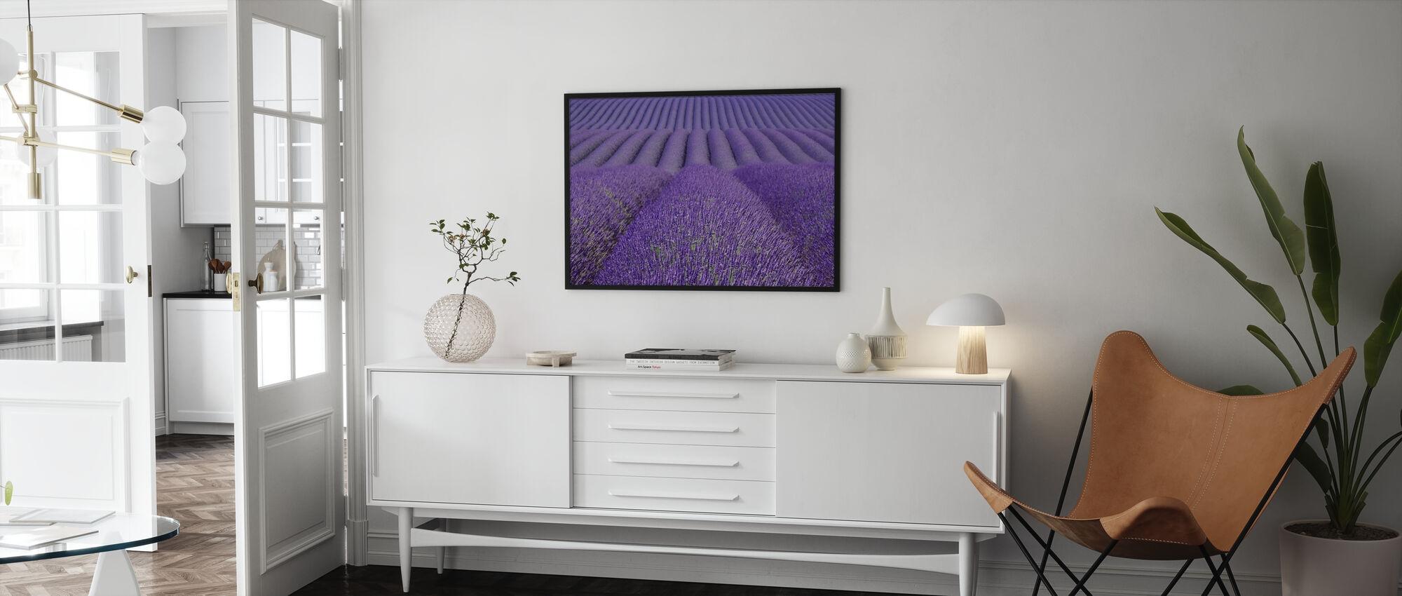Purple Lavender Field - Poster - Living Room