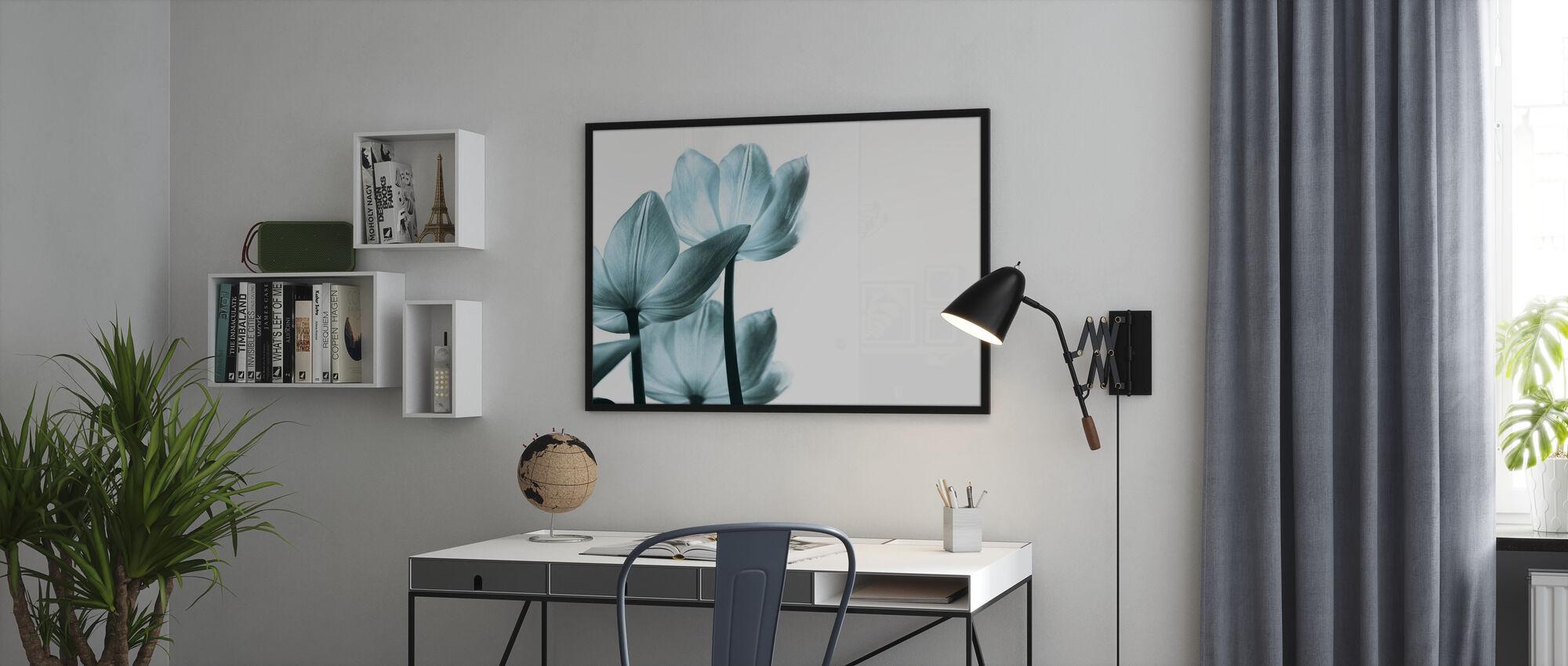 Translucent Tulips - Framed print - Office