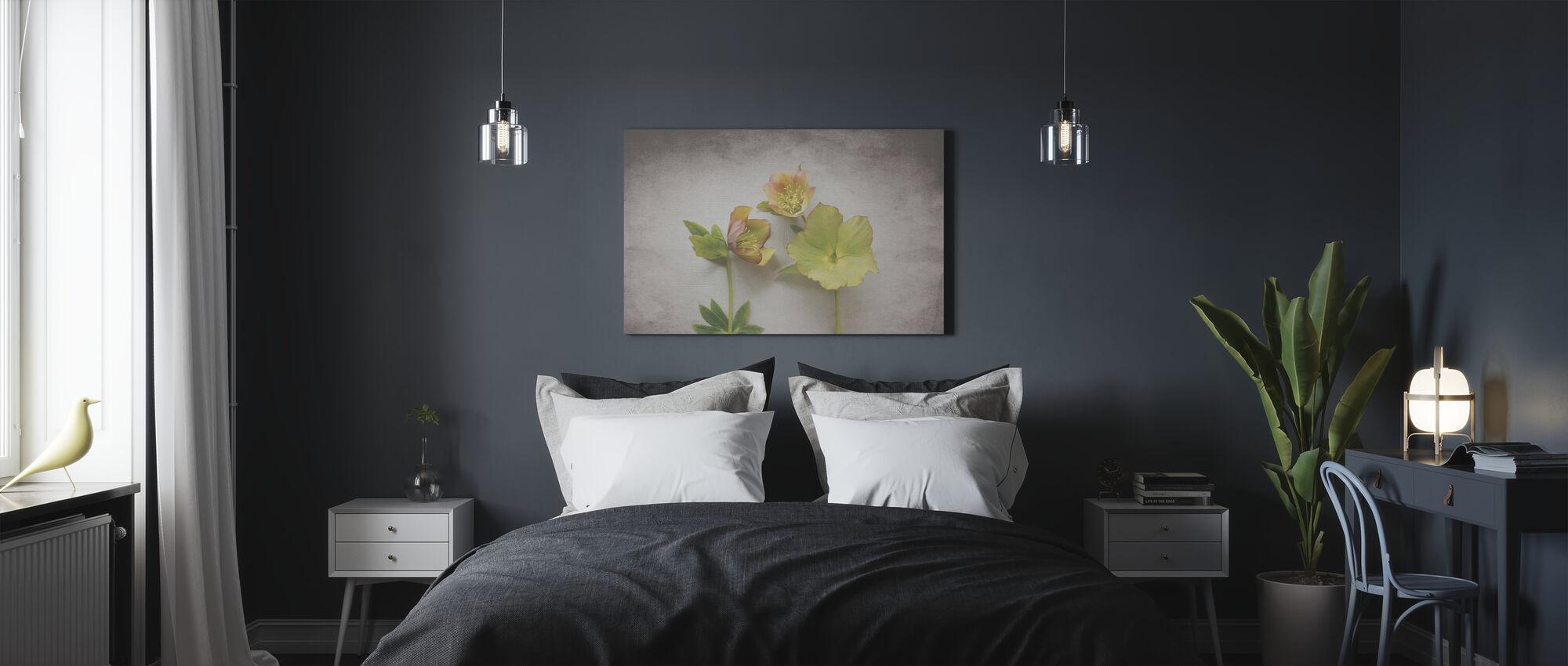Vintage Hellebore Study IV - Canvas print - Bedroom