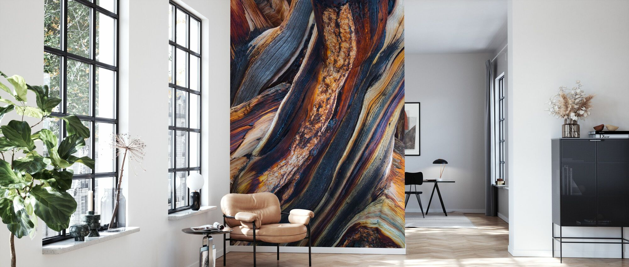 Bristlecone Pine, White Mountains, California - Wallpaper - Living Room