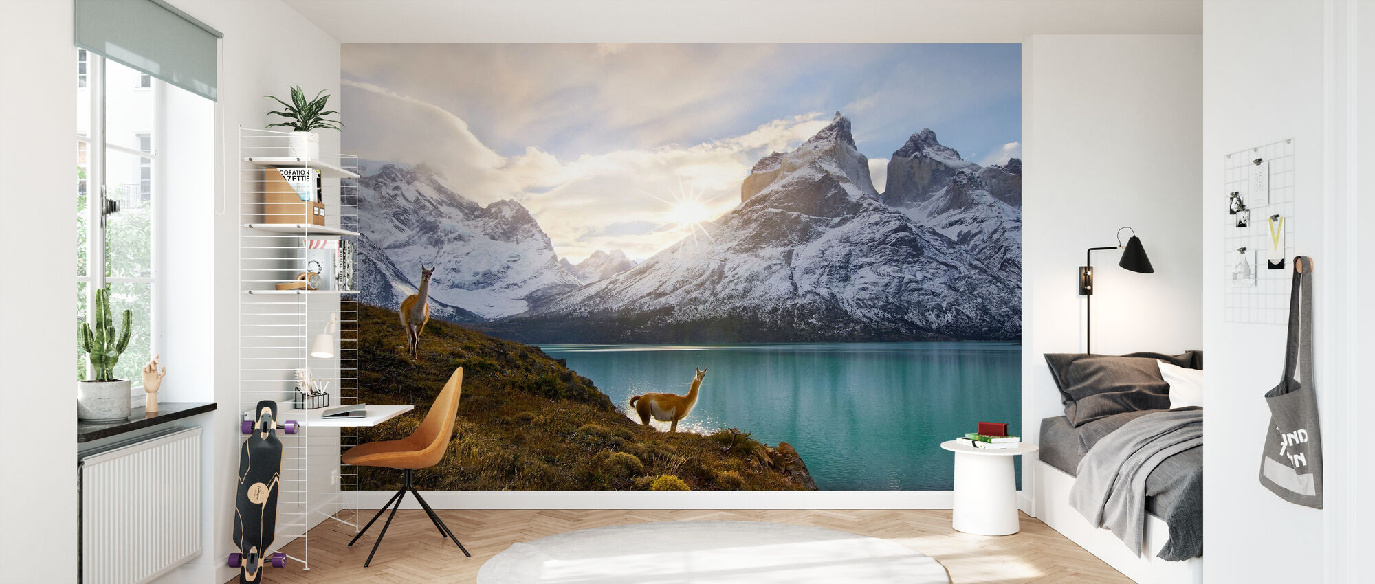 Two Guanacos at Edge of Lake, Torres del Paine National Park - Wallpaper - Kids Room