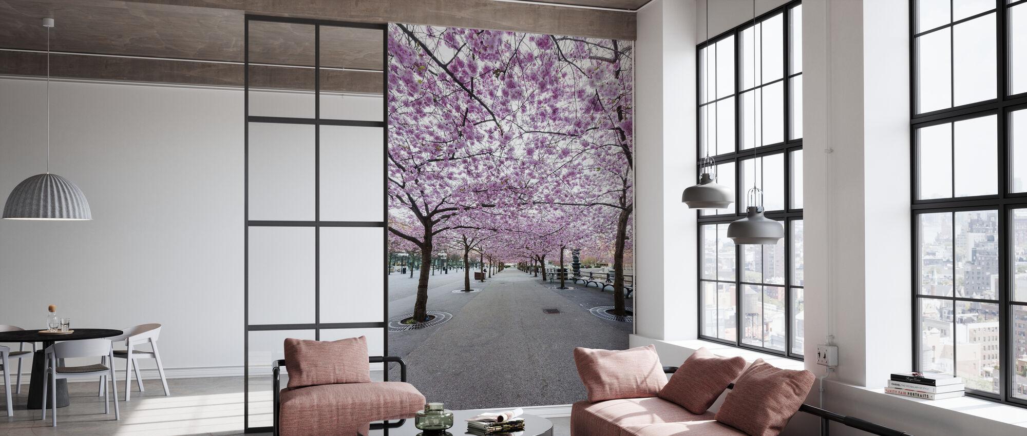 Kirsebær Treet Blossoms - Tapet - Kontor