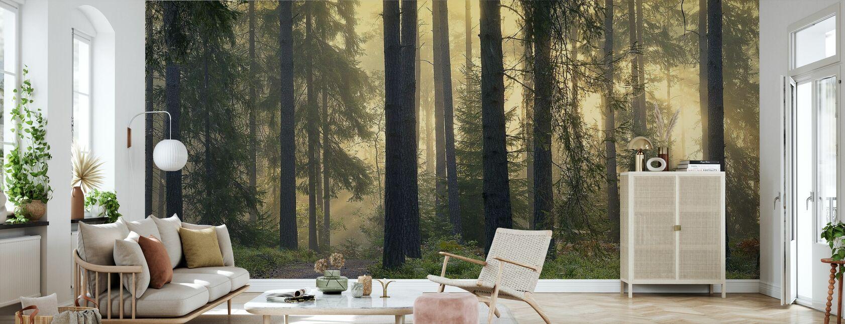 Sendero forestal - Papel pintado - Salón