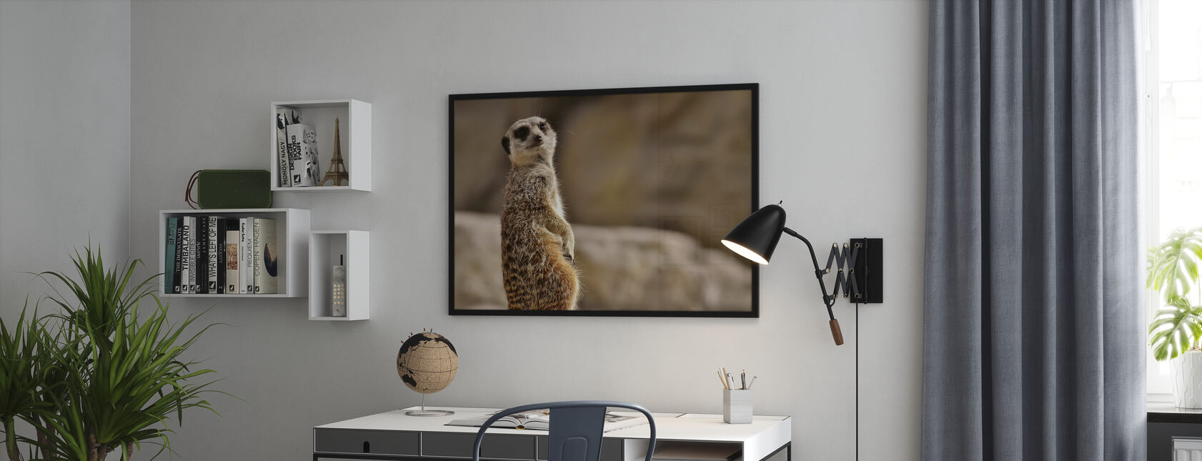 Meerkat in Tiergarten Zoo - Poster - Office