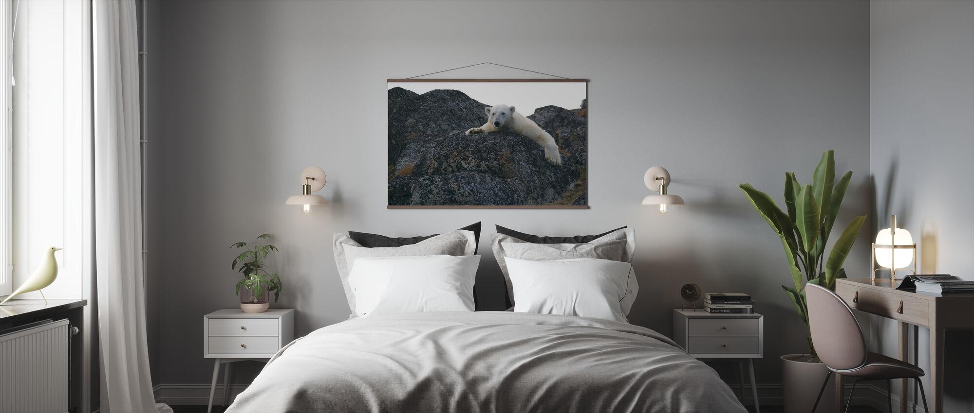 White Polar Bear - Poster - Bedroom