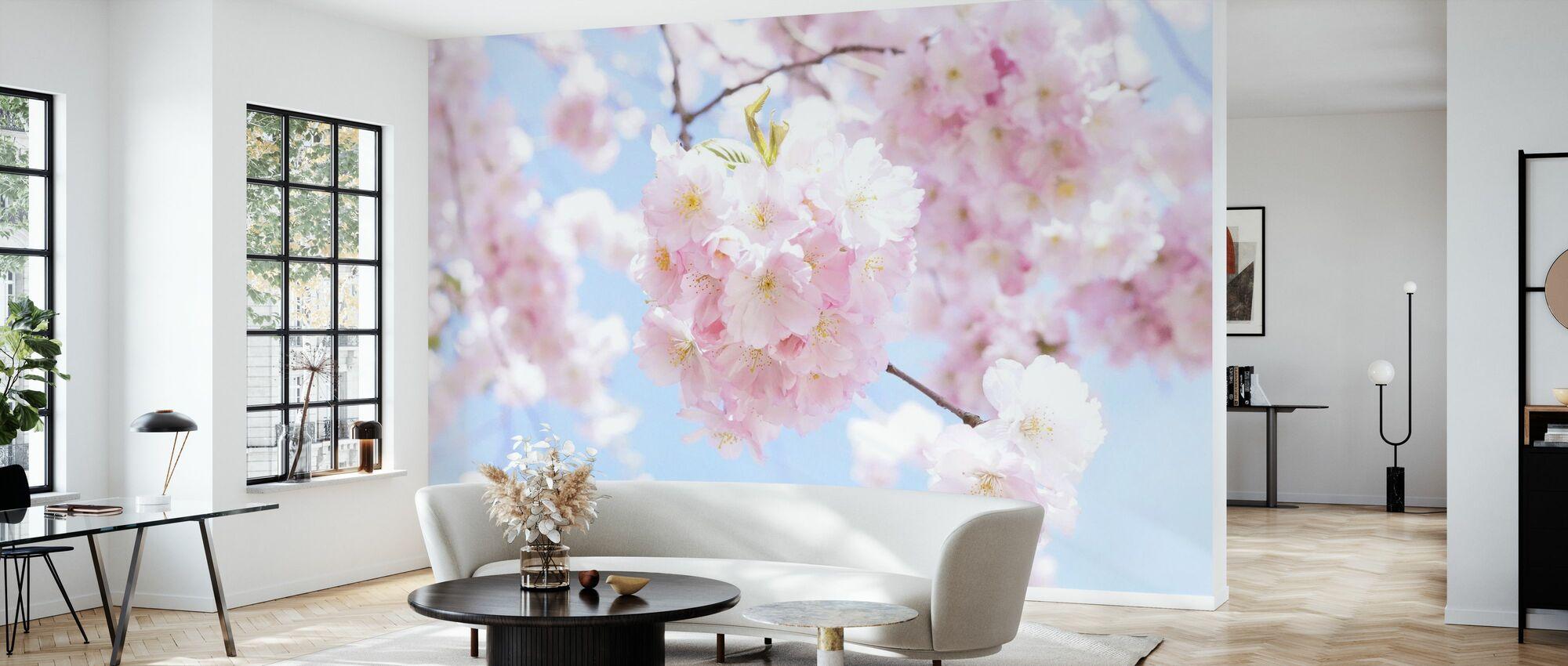 Kirsebærtræ Blomster - Tapet - Stue