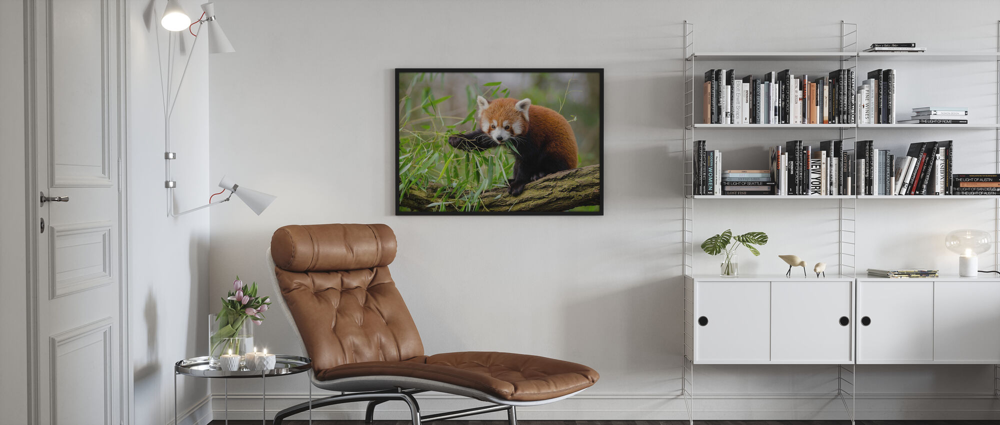 Lilla Röd Panda - Poster - Vardagsrum